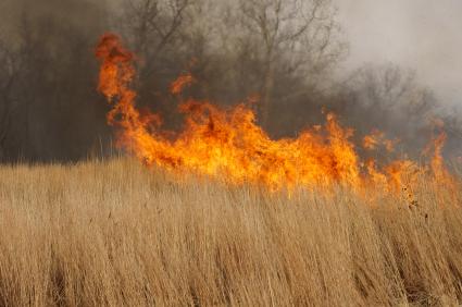 wild fires rage on dry ground