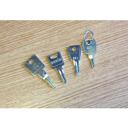 Kentec Fire Alarm Panel Spare Key Set