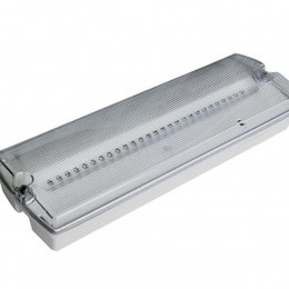 Meteor Maxi IP65 LED LED Emergency Bulkhead