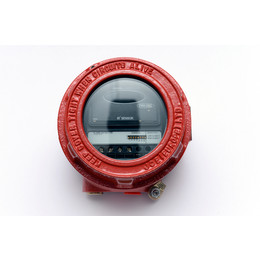 Apollo Flameproof Intelligent IR2 Flame Detector